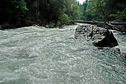 Nooksack channel2