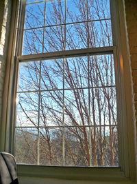 Nescent window