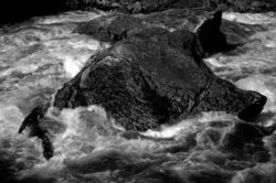 Selway boulders_22apr12_BW_low