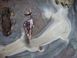 Muddy creek mud_3 low res